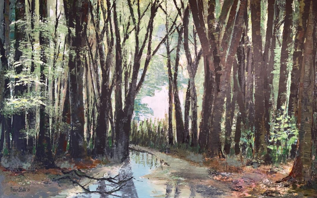 De bosbeek